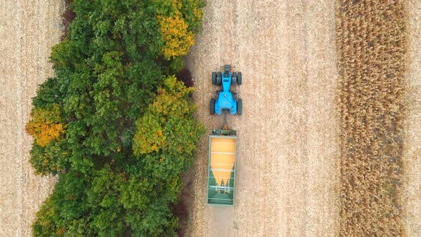Thumbnail for Aerial Shot of Tractor Transporting Corn Cargo Along Field. Flying Over Agricultural Machine Driving