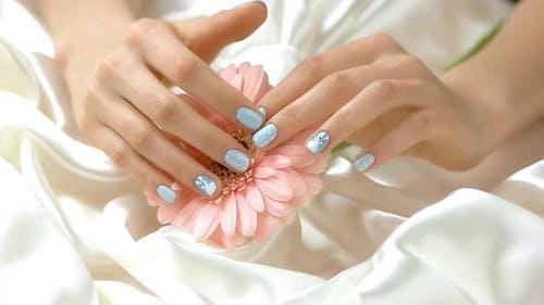Hand Caress Flower, Slow Motion