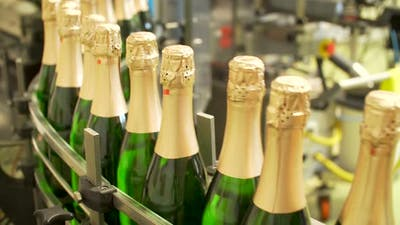 Champagne Bottles on Factory Conveyor Belt