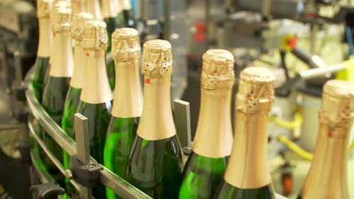 Champagnerflaschen auf Fabrik Förderband