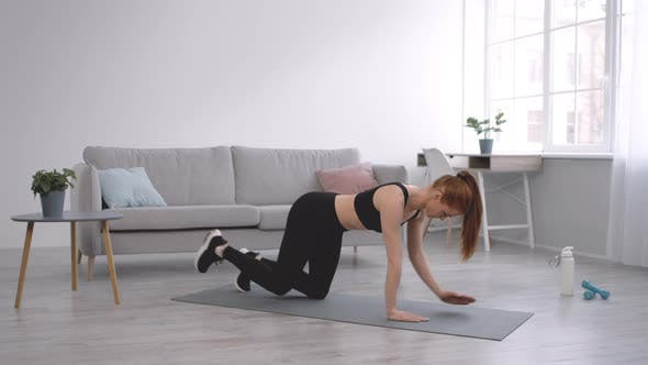 Lady Exercising Standing On AllFours Lifting Hand And Leg Indoors