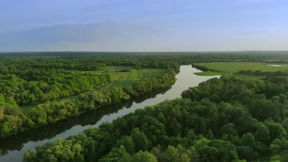 Cover Image for Aerial View of a Beautiful River Landscape in a Green Forest at Sunset