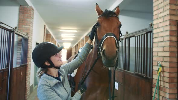 Thumbnail for Woman Caressing Beautiful Horse in Stable