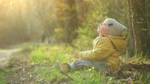 Boy on the Outdoor Is Playing and Rejoices with Autumn Leaves. A 2-3 Year Old Boy Is Sitting in a