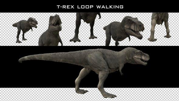 Thumbnail for T-Rex Loop Walking Pack