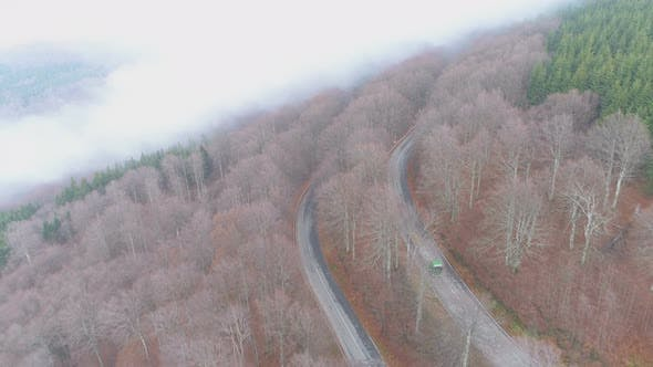 Green Semi-truck Driving on Winding Misty Forest Road in Bulgaria