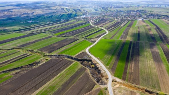 Thumbnail for Flying Over Agricultural Fields of Plowed Crop