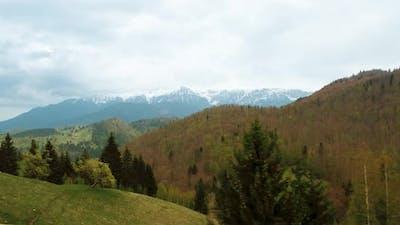 Beautiful Pastoral Landscape