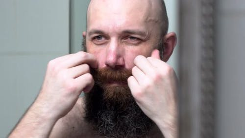 Bold Man Is Combing His Beard and Mustache By Hands. Attractive Man in Bathroom Looks in Mirror and