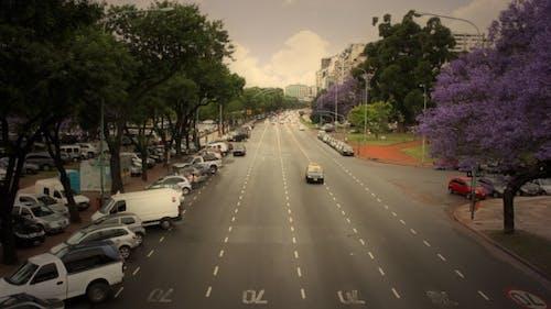 Avenue Traffic