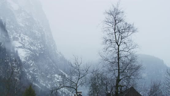 Thumbnail for Leafless trees and mountains on a foggy day