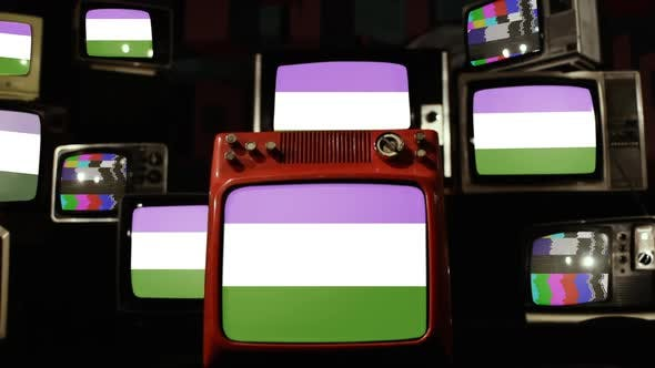 Thumbnail for Genderqueer Pride Flag on Retro TVs.