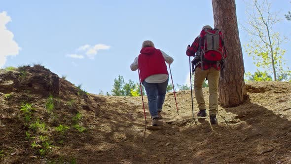 Thumbnail for Active Senior People Hiking with Trekking Poles