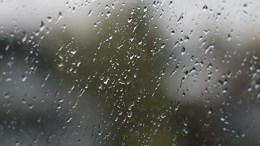 Thumbnail for Rain Drops Fall On The Glass
