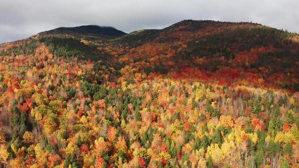 Aerial flythrough of Mountain Forests in Autumn with Fall Colors in New England