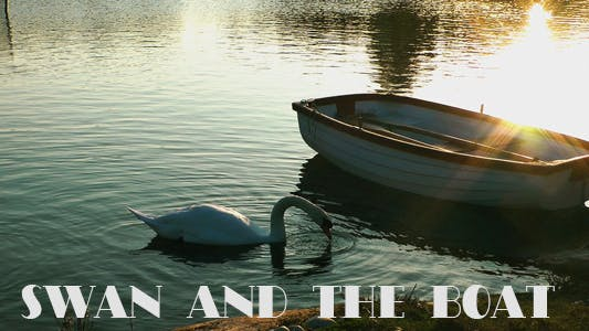 Thumbnail for Swan and Boat on the Lake