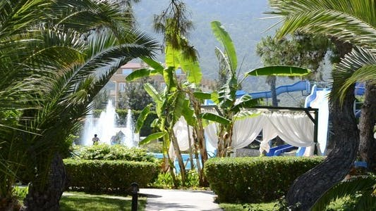 Thumbnail for Pool in Tropical Park