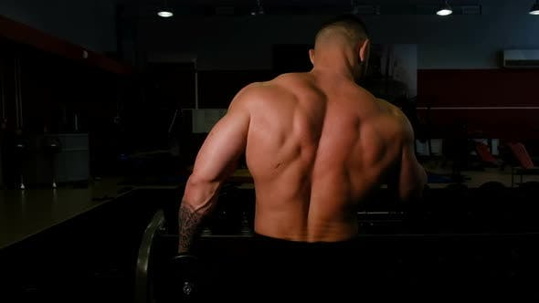 Thumbnail for Powerlifter Shakes His Biceps with Dumbbells, Back View Close-up