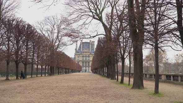 Thumbnail for Alley In Tuileries Garden 2