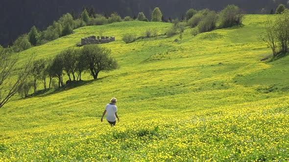Thumbnail for Alone Woman Walks in Yellow Flowered Meadow