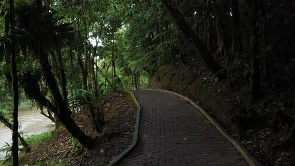 Thumbnail for Following a paved pedestrian path surrounded by trees that is leading you alongside a river