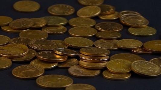 Bulgarian Coins 1