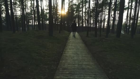 Thumbnail for Lonely Girl Walking on Wooden Path in Forest