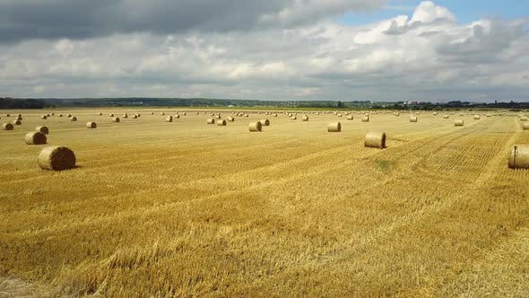 Field With Straw Bale