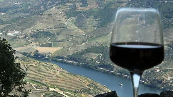 Thumbnail for Wine Landscape