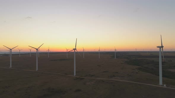 Thumbnail for Wind Energy Producing at Coastal Wind Farm in Bulgaria