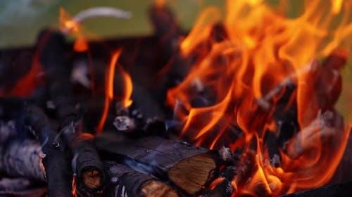 Black logs in fire