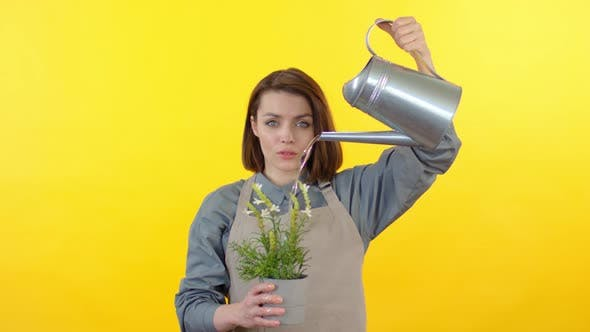 Thumbnail for Portrait of Woman Watering Plant in Pot