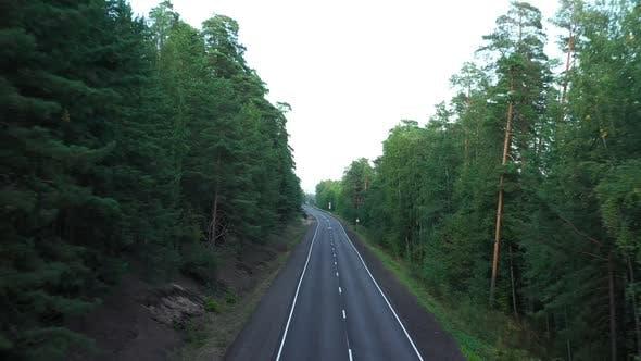 Thumbnail for Asphalt Road Through Pine Forest