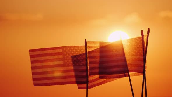 Cover Image for Several American Flags Against the Setting Sun and Orange Sky