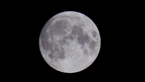 Thumbnail for Full Moon