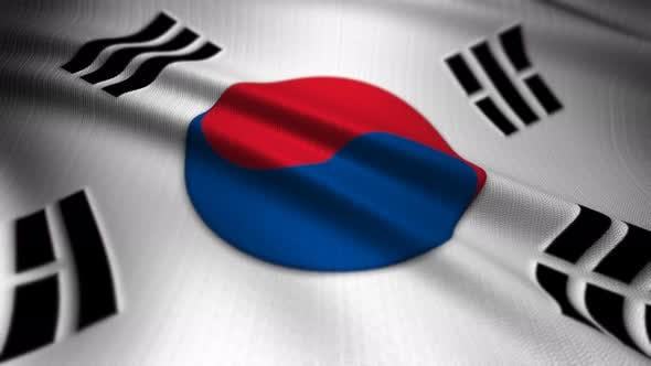 Thumbnail for Republic Of Korea Flag Seamless Loop