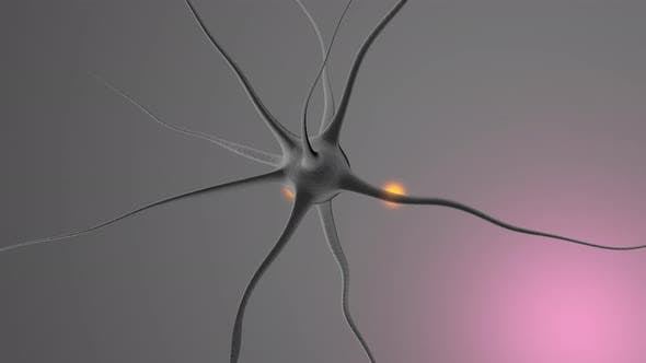 3D rendered Animation of a neural cell