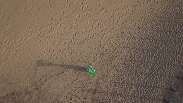 Thumbnail for Aerial View of Woman with Brazilian Flag and Nature Scene