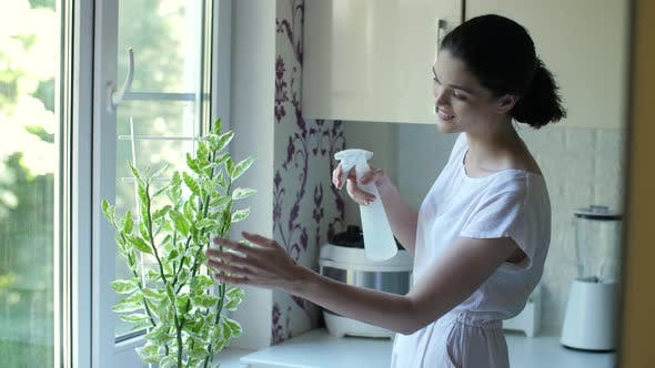 Thumbnail for Junge Frau Pflege für Zimmerpflanze