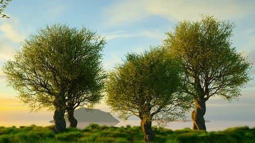 Untouched mediterranean nature landscape