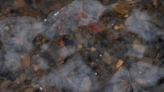 Thumbnail for Air Bubbles Under Ice
