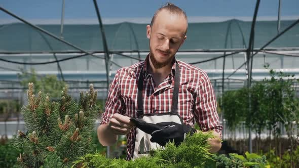 Thumbnail for Man Wearing Gloves in an Apron with Garden Tools.