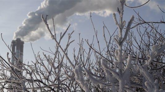 Greenhouse Gas Emission