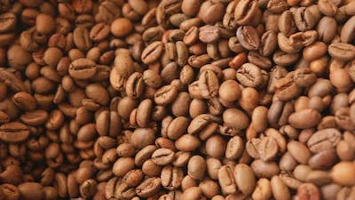 Raw Coffee Beans Close Up