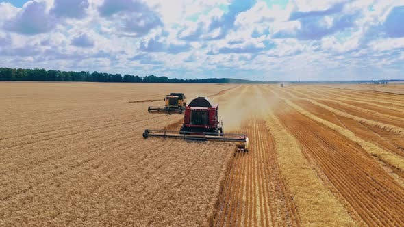Landmaschinen sammeln reifen Weizen