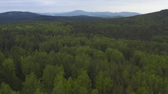 Cover Image for Drone Flight Over Green Forest and Hills on a Background