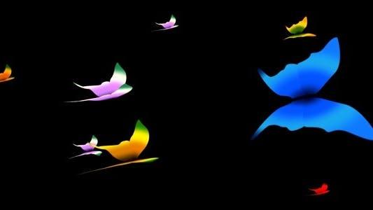 Thumbnail for Tropical Butterflies - Loop