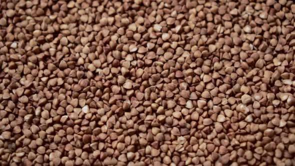 Thumbnail for Raw Buckwheat Grains Rotate, Close-up.