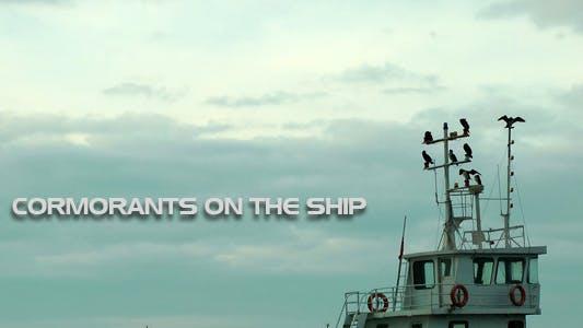 Thumbnail for Cormorants On The Ship
