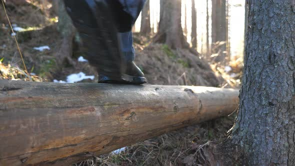 Thumbnail for Male Feet of Hiker Walks Along the Lying Wood Log in Pine Forest at Early Spring. Unrecognizable